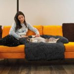 Buy pet accessories – Pet Dog Mat Sofa Dog Bed Thickened Soft Pad Blanket Cushion Home Washable Rug Warm Cat Bed Mat For Couches Car Floor Protector